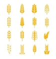 Wheat ears bread symbols vector image
