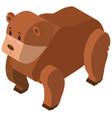 3d design for brown bear vector image