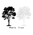 Maple Tree Silhouette Contours and Inscriptions vector image vector image