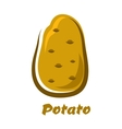 Cartoon brown organic potato vegetable vector image