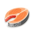 Steak of red fish salmon for sushi vector image
