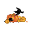 ravens and pumpkins vector image