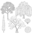trees outline vector image