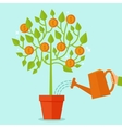 money tree concept in flat style vector image vector image