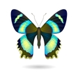 bright Butterfly isolated EPS 10 vector image
