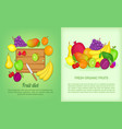 fruits banner set cartoon style vector image