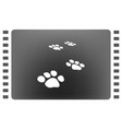 paw prints icon vector image