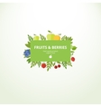 Label with fresh fruits and berries vector image