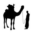 Camel silhouette black vector image