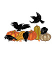 ravens and pumpkins vector image vector image