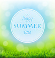 Summer Time Banner With Green Grass vector image