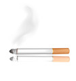 cigarette white background vector image