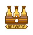 package of three beer bottles brewery symbol flat vector image