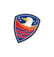 American Bald Eagle Head Flag Shield Retro vector image