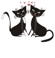 two cats vector image vector image