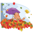 Cat autumn and a leaf fall cartoon vector image