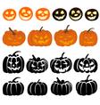 Pumpkins Set vector image vector image