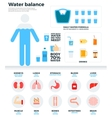 Human water balance health concept vector image