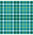 Seamless plaid pattern in dark green white and vector image