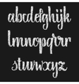 Alphabet Calligraphic font chalk effect vector image