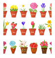 cute set seamless borders with lovely flowers vector image