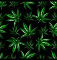 marijuana leaf pattern vector image