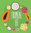 set of isolated tropical fruits in cross sections vector image