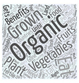The Benefits of Eating Organically Grown vector image