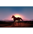 A sunset with a horse vector image vector image