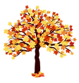 Autumn Maple Tree vector image vector image