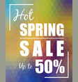hot spring sale over polygonal background vector image