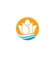 lotus design logo template vector image