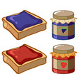 two flavor of jam and bread vector image
