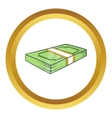 Packed dollars money icon vector image