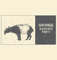 silhouette tapir in grunge design style animal vector image