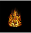 flame fire isolated over black background vector image