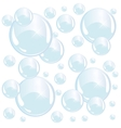 bright blue soap bubbles on white background vector image