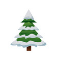 cute pine tree christmas decoration ornament image vector image