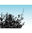 bush silhouette vector image