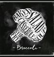 broccoli cutting scheme chalk vector image