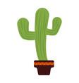 Green cactus icon vector image