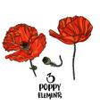 poppy flowers design elements vector image