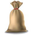 Full sack vector image