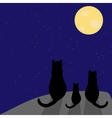 Silhouette of cat with full moon vector image