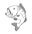 black and white fish vector image