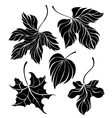 Set of Leaves Silhouette vector image