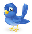 cute cartoon bluebird vector image vector image