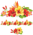 Garland of tropical flowers vector image