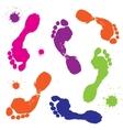 foot prints vector image