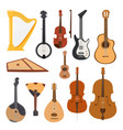 stringed musical instruments classical orchestra vector image